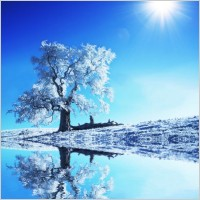 winter_landscape_highdefinition_picture_1_166142